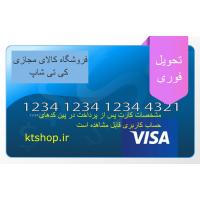 ویزا کارت مجازی 0.1 دلاری آمریکا